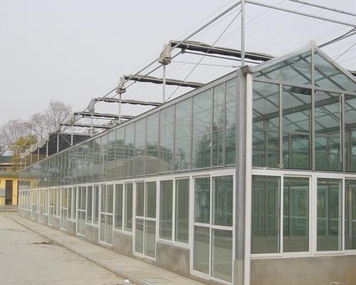 章鱼直播足球玻璃温室章鱼直播足球主播